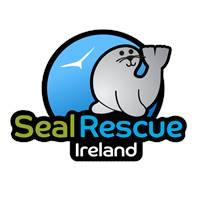 Seal Rescue Ireland Gale Loescher