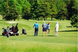 Golf Career