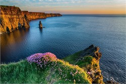 Reasons to Come and Work in Ireland